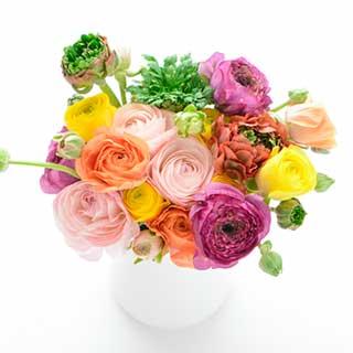 生花・切り花