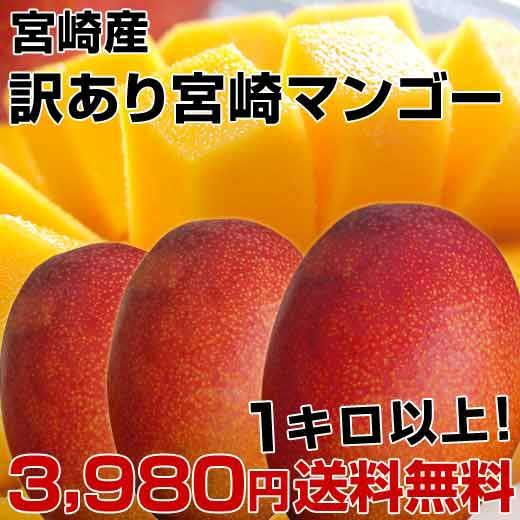 訳あり宮崎マンゴー・驚きの価格!なんと1キロ以上で⇒3,980円・送料無料!訳ありと言っても、味はピカ一。