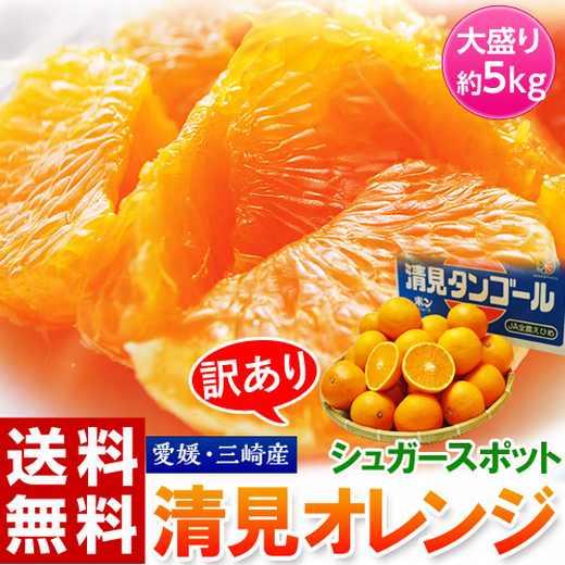 助けて!!訳有「清見オレンジ」山盛り5キロが破格⇒送無2,580円!!
