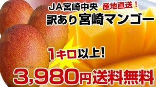 訳あり!宮崎マンゴー1キロ3,980円送料無料