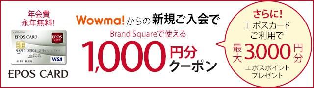 エポス訴求(+3000円)