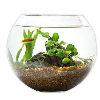 熱帯魚・アクアリウム用品
