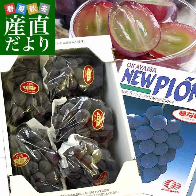 岡山県産JAつやま ニューピオーネ約2キロ
