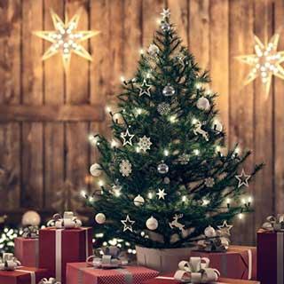 クリスマスツリー選び方