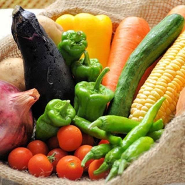 九州野菜と朝どり卵、旬の果物付き