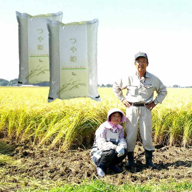 新米29年度宮城県登米市産つや姫無洗米10kg