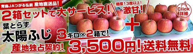 人気りんご2箱で3,500円・送料無料