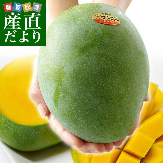 沖縄県より産地直送レア品キーツマンゴー