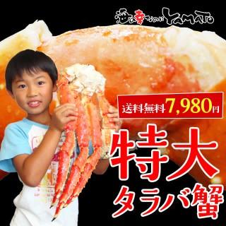 特大タラバ蟹!船上ボイル→船上凍結厳選